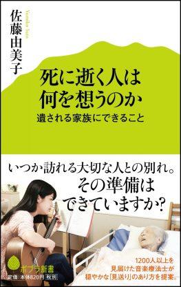 obi-fuchi2